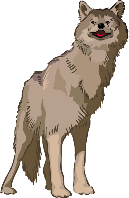 Free . Wolf clipart snow