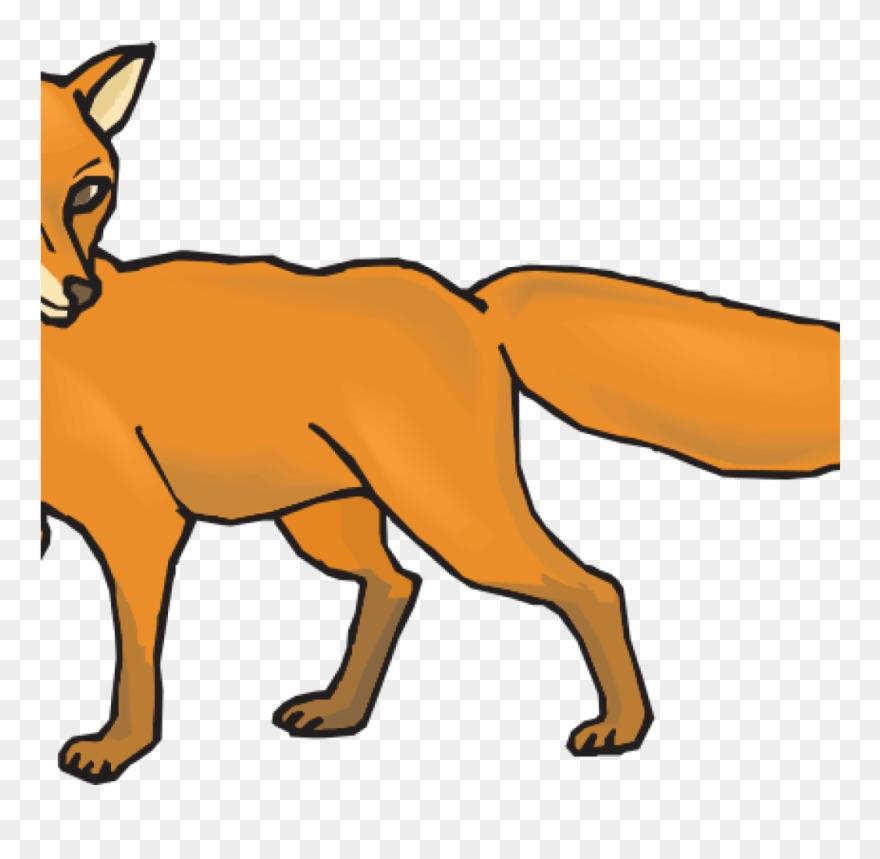 Fox clipart desert fox. Images png download