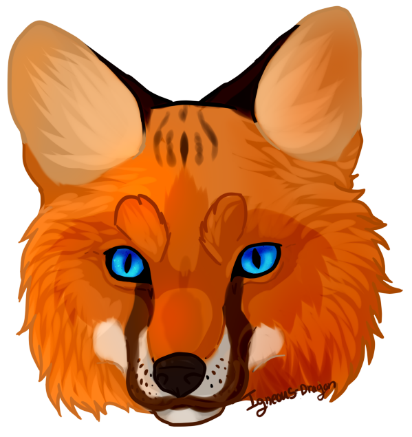 Fox clipart desert fox.  collection of face