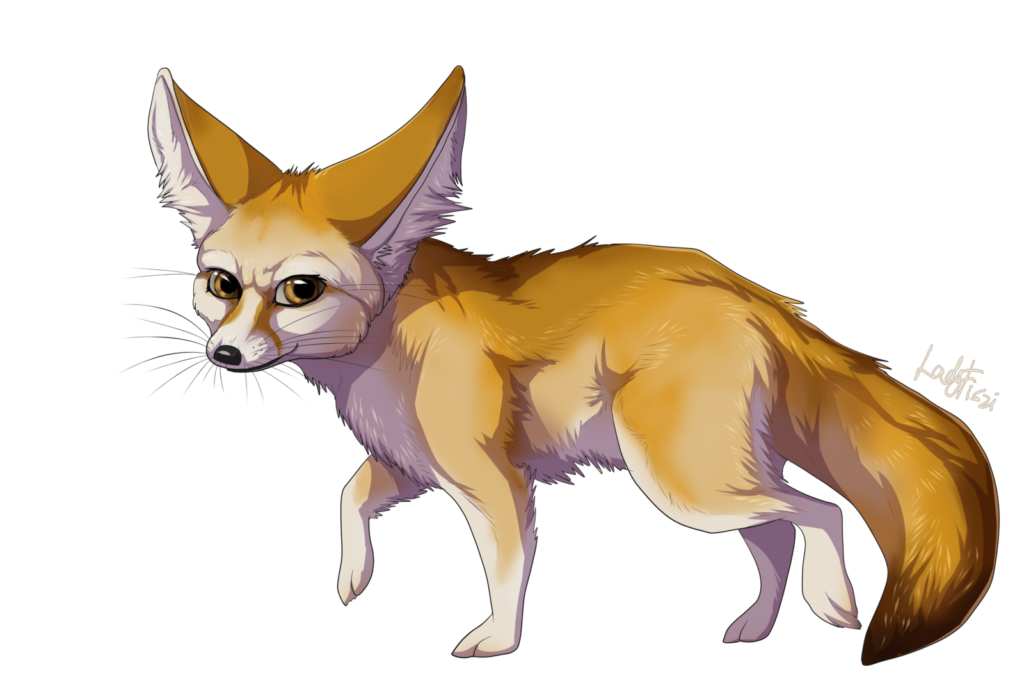 Png transparent image peoplepng. Clipart fox fennec fox