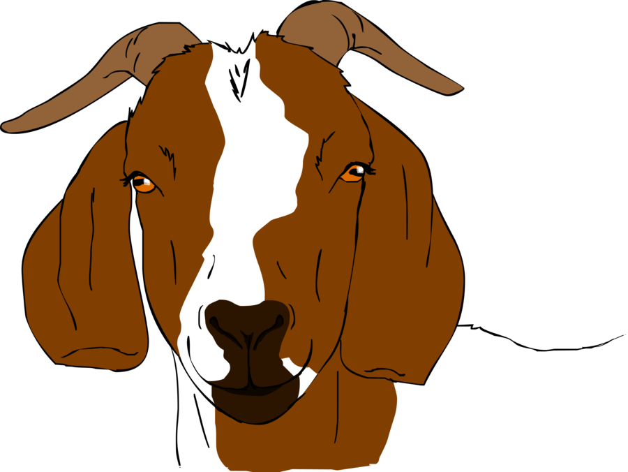 goat clipart toon