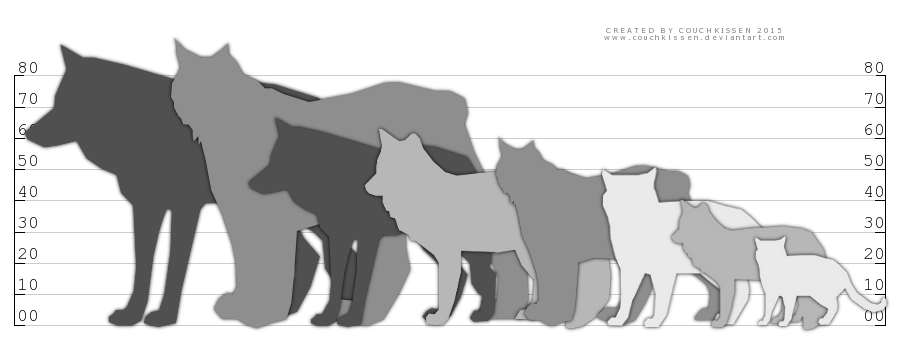 Wolves clipart snow. Comparison chart wolf fox