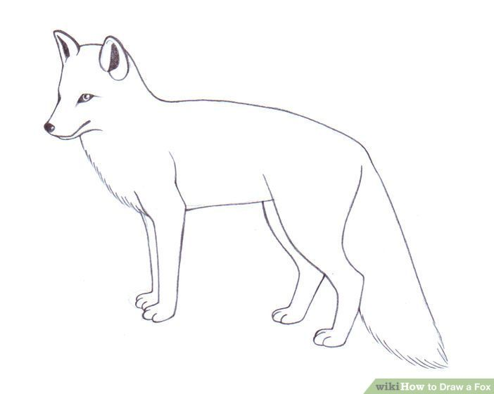 Kit x free clip. Wolf clipart polar fox