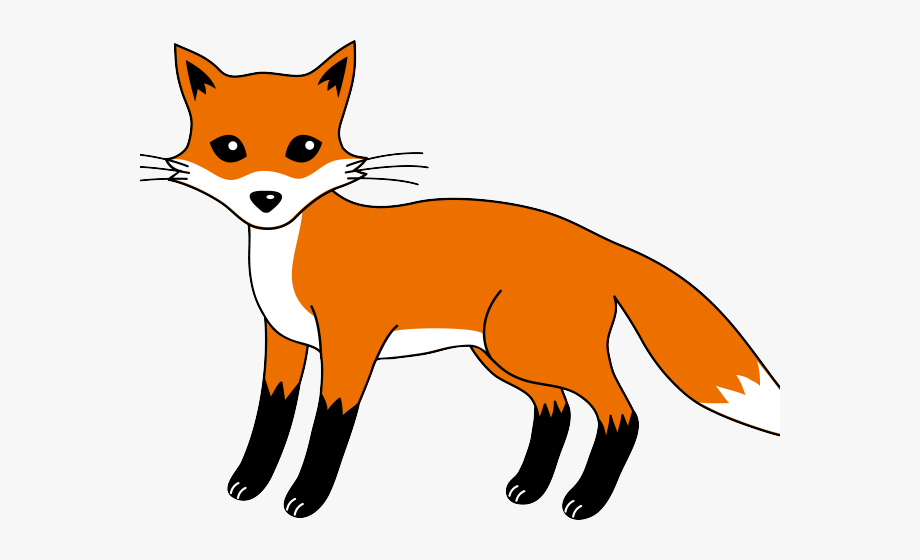 Fox clipart mammal. Small food chain with