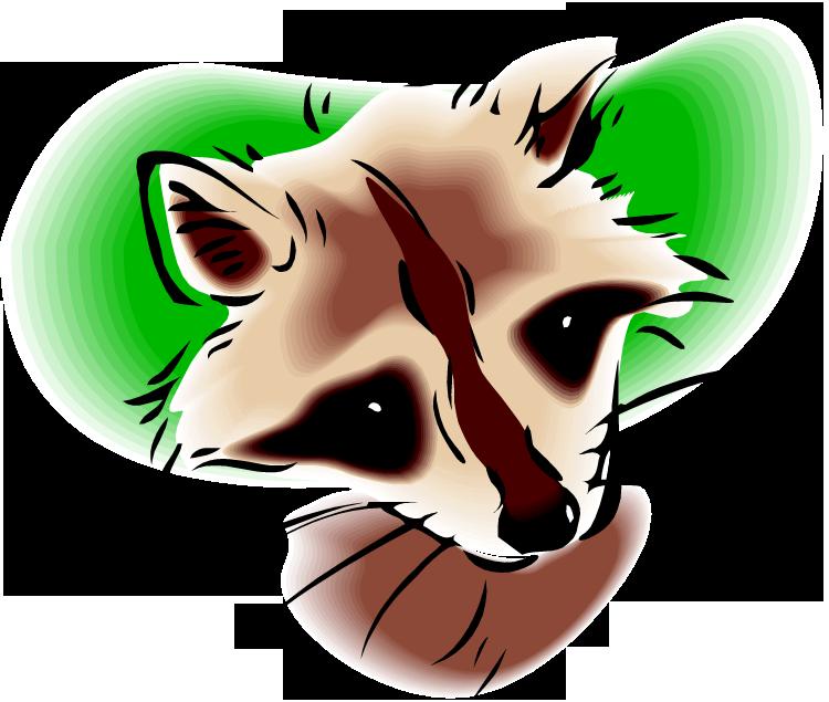Nose clipart fox. Free raccoon