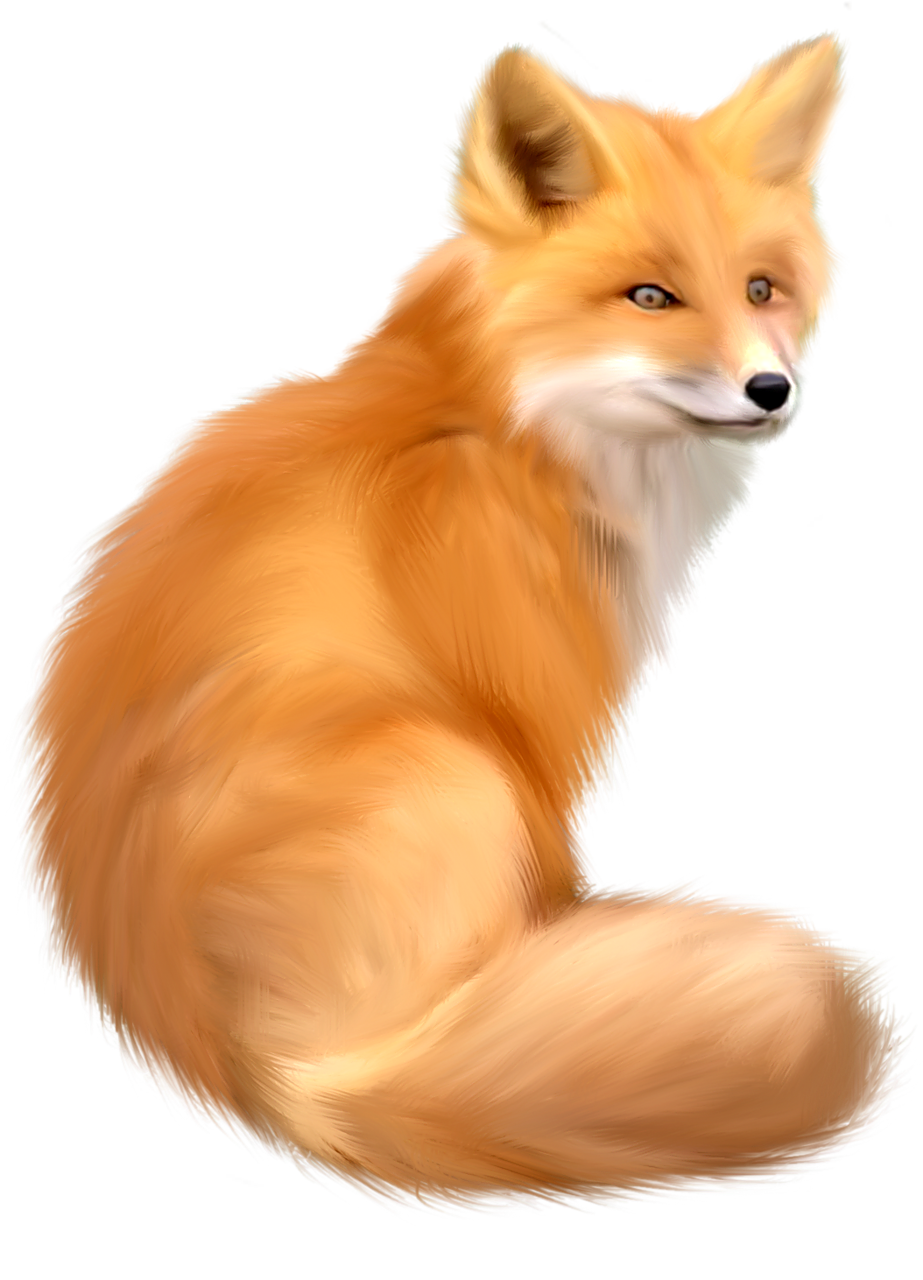 Clipart fox red fox. Icon web icons png
