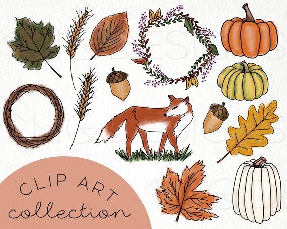 Harvest clipart acorn. Fall hand drawn clip