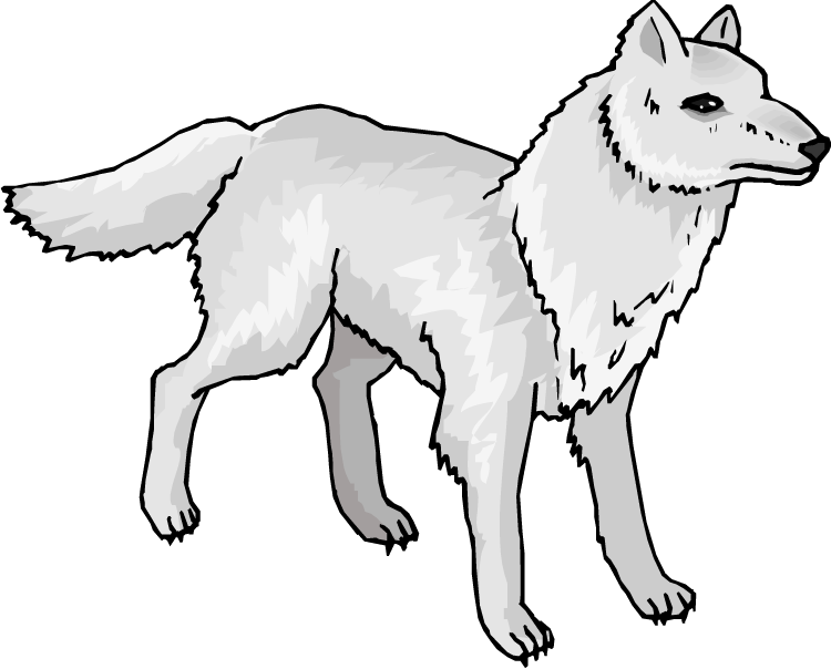 collection of and. Wolf clipart polar fox