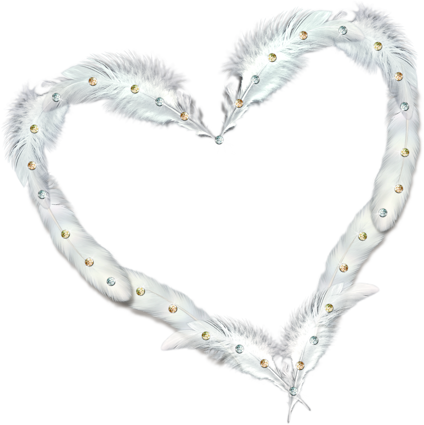 Transparent heart with feathers. Clipart frame feather