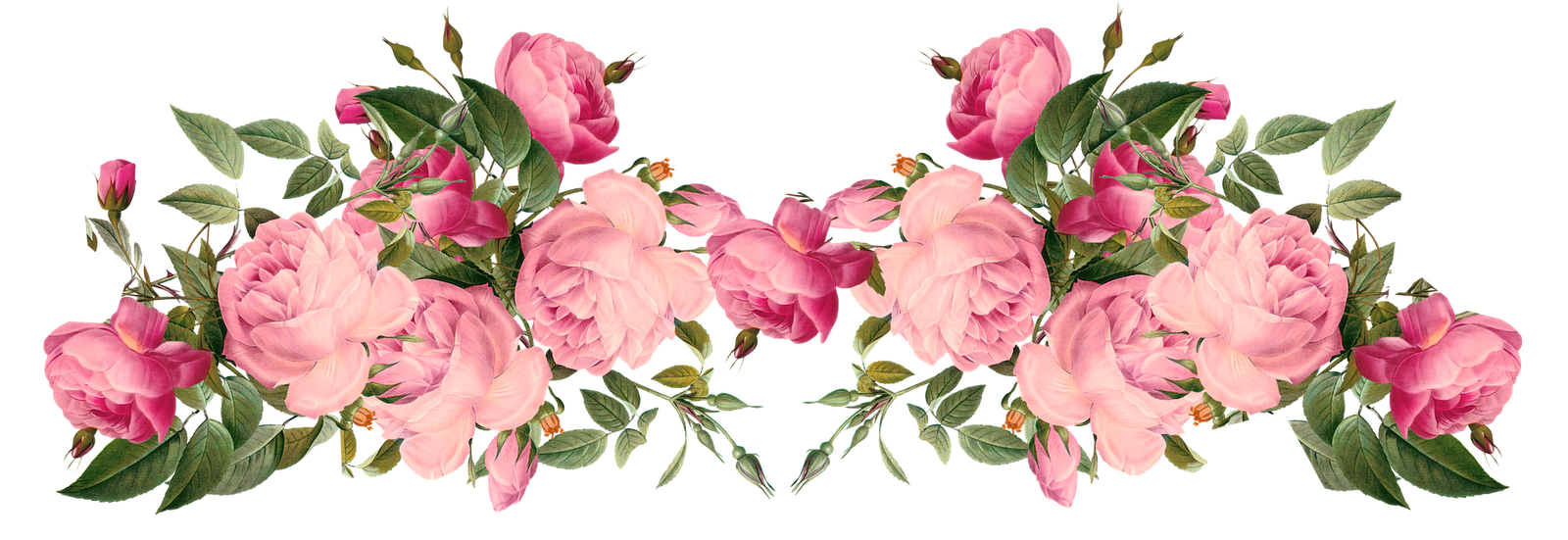 Clipart hufford family funeral. Rose border png