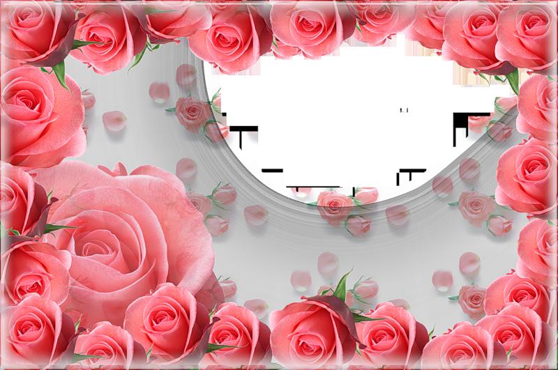 Pink roses gallery yopriceville. Rose frame png