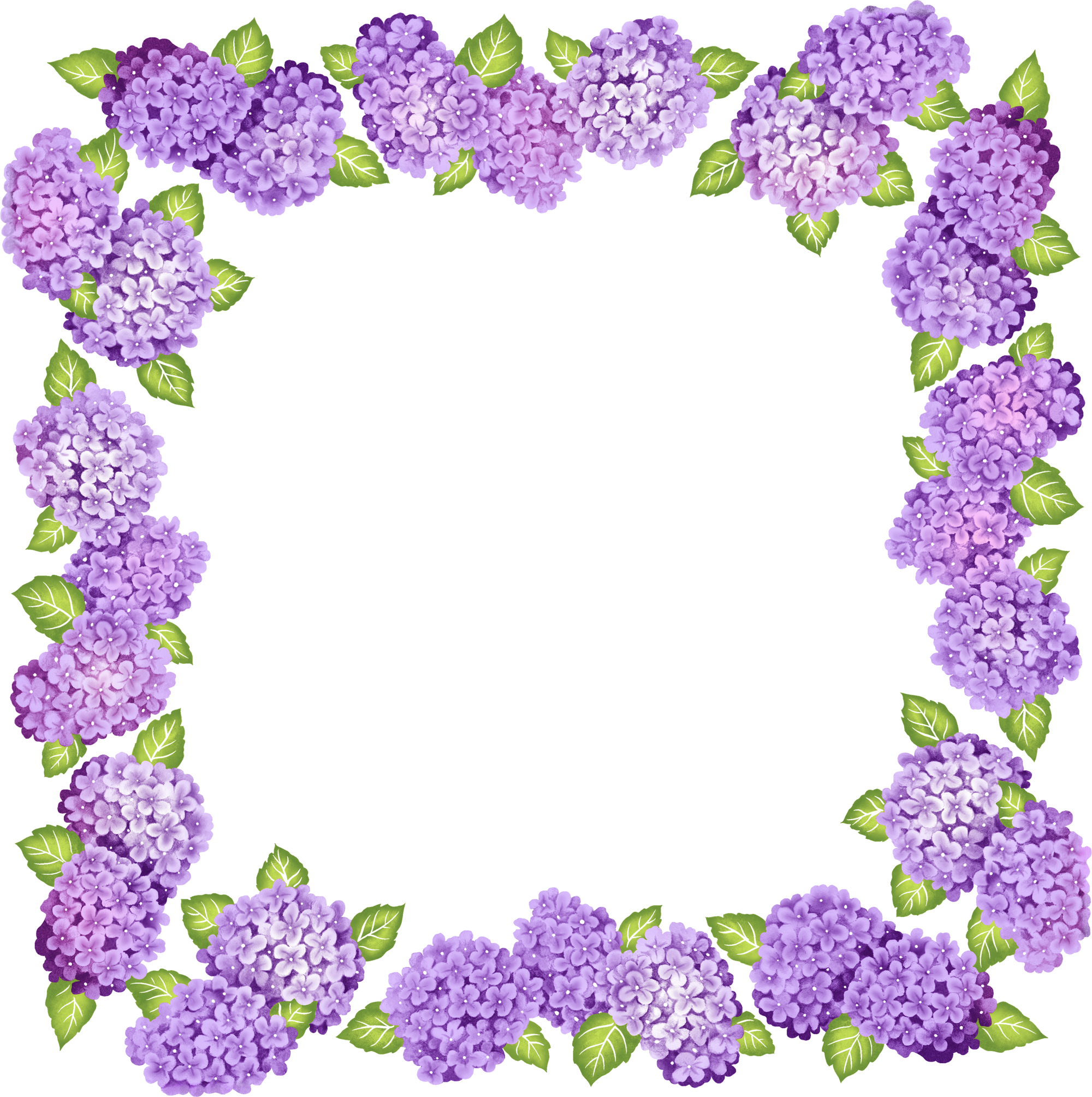 Clipart rose lavendar. Transparent purple frame polyvore