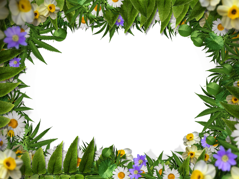 Flower border png with. Jungle clipart nature frame