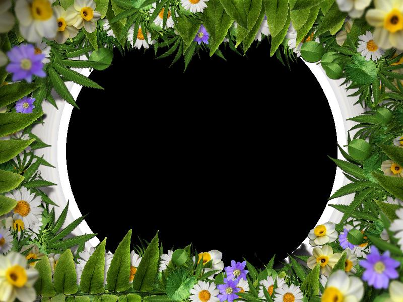 Flower frame with green. Leaf border png