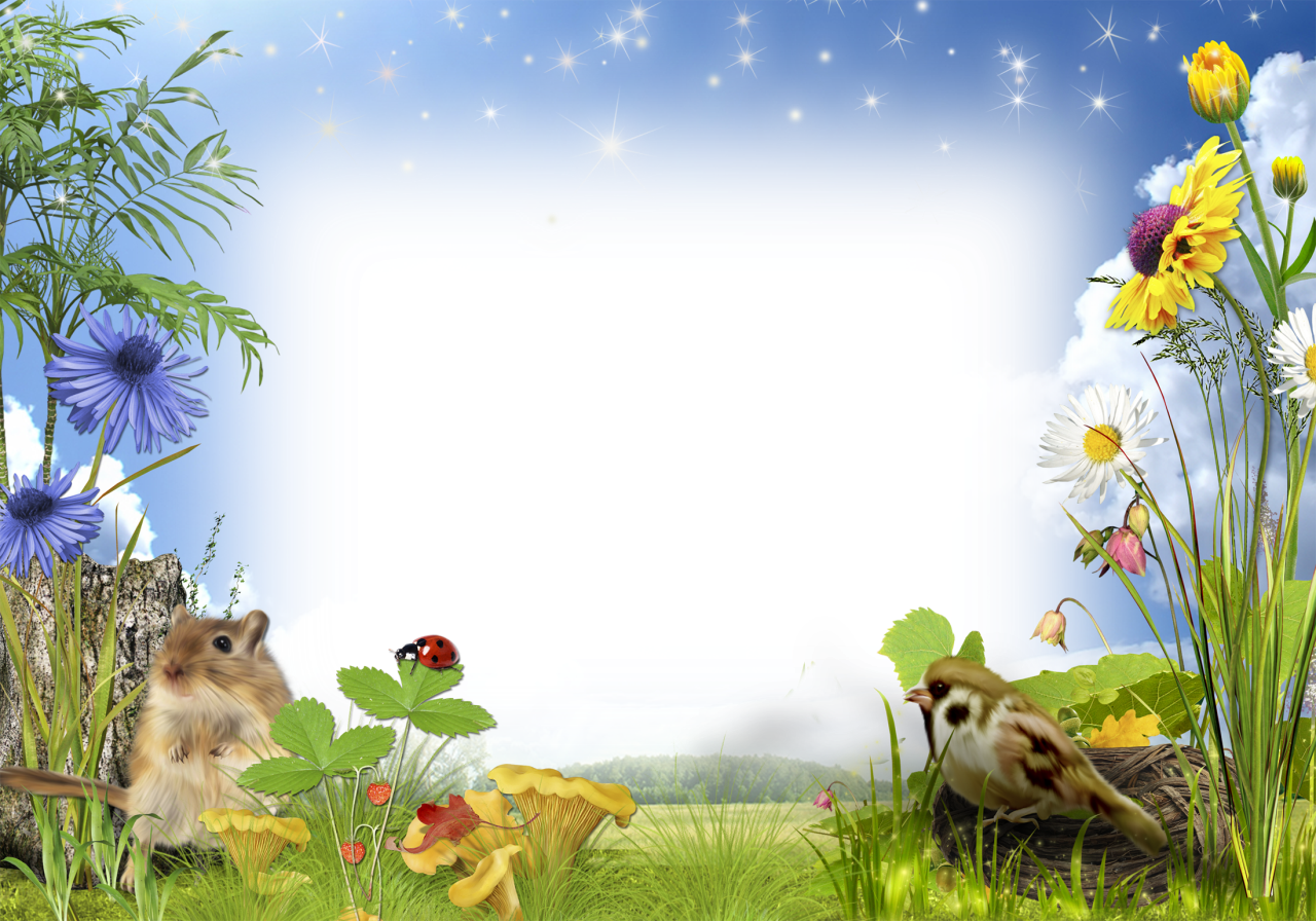 Poppy clipart nature. Photo frame with flowers
