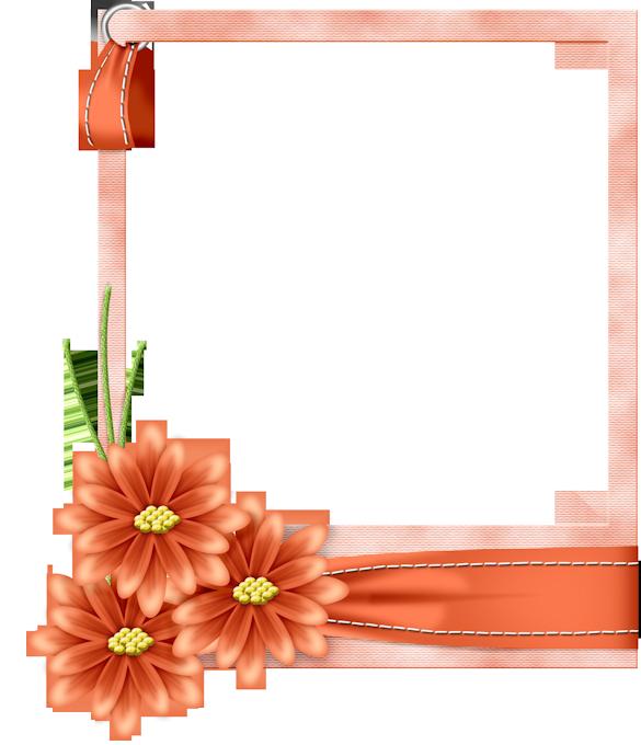 Flo frame brown gallery. Clipart frames peach