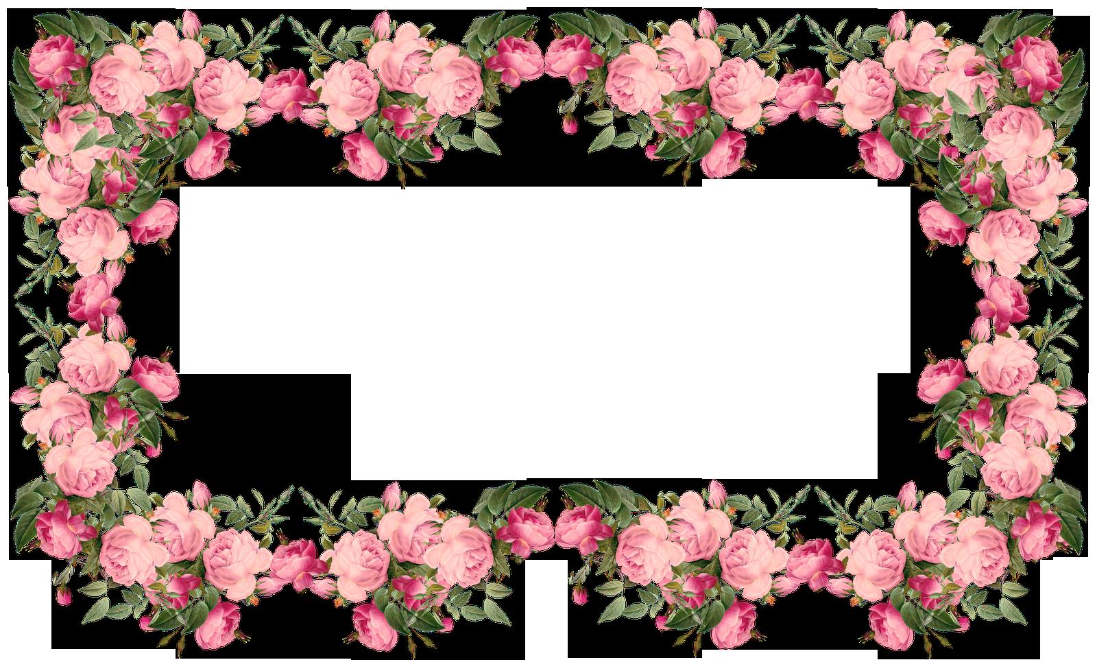 Vintage pink free roses. Rose clipart frame