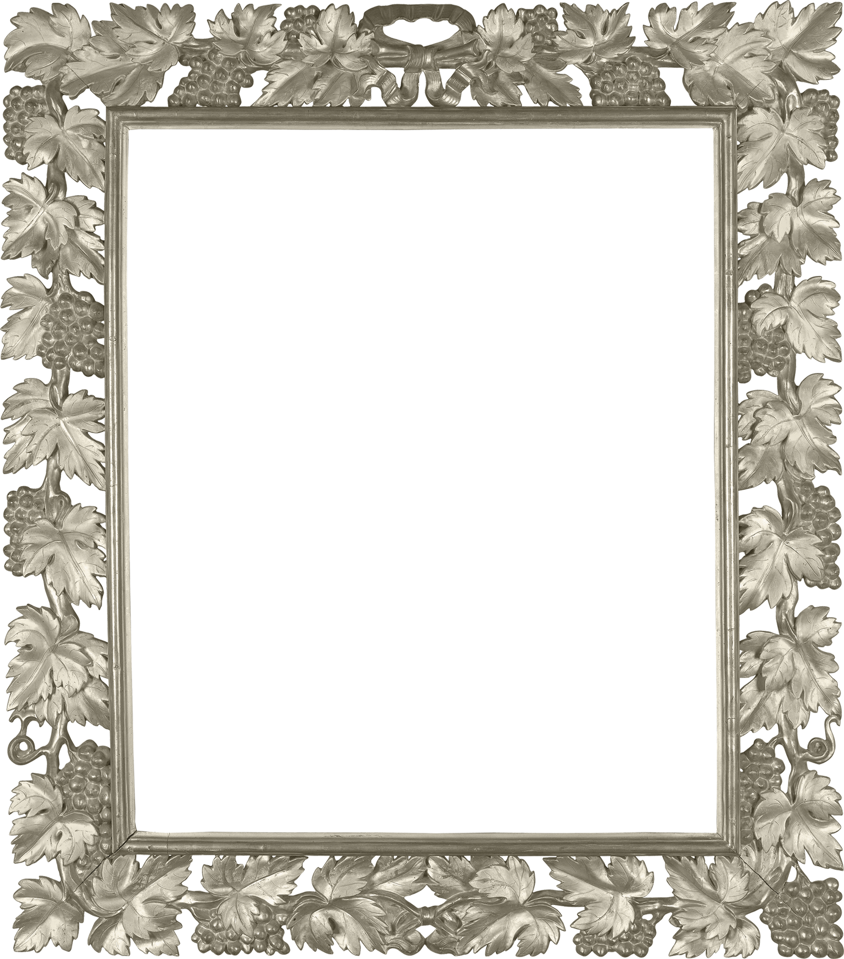 Transparent photo with vine. Silver frame png