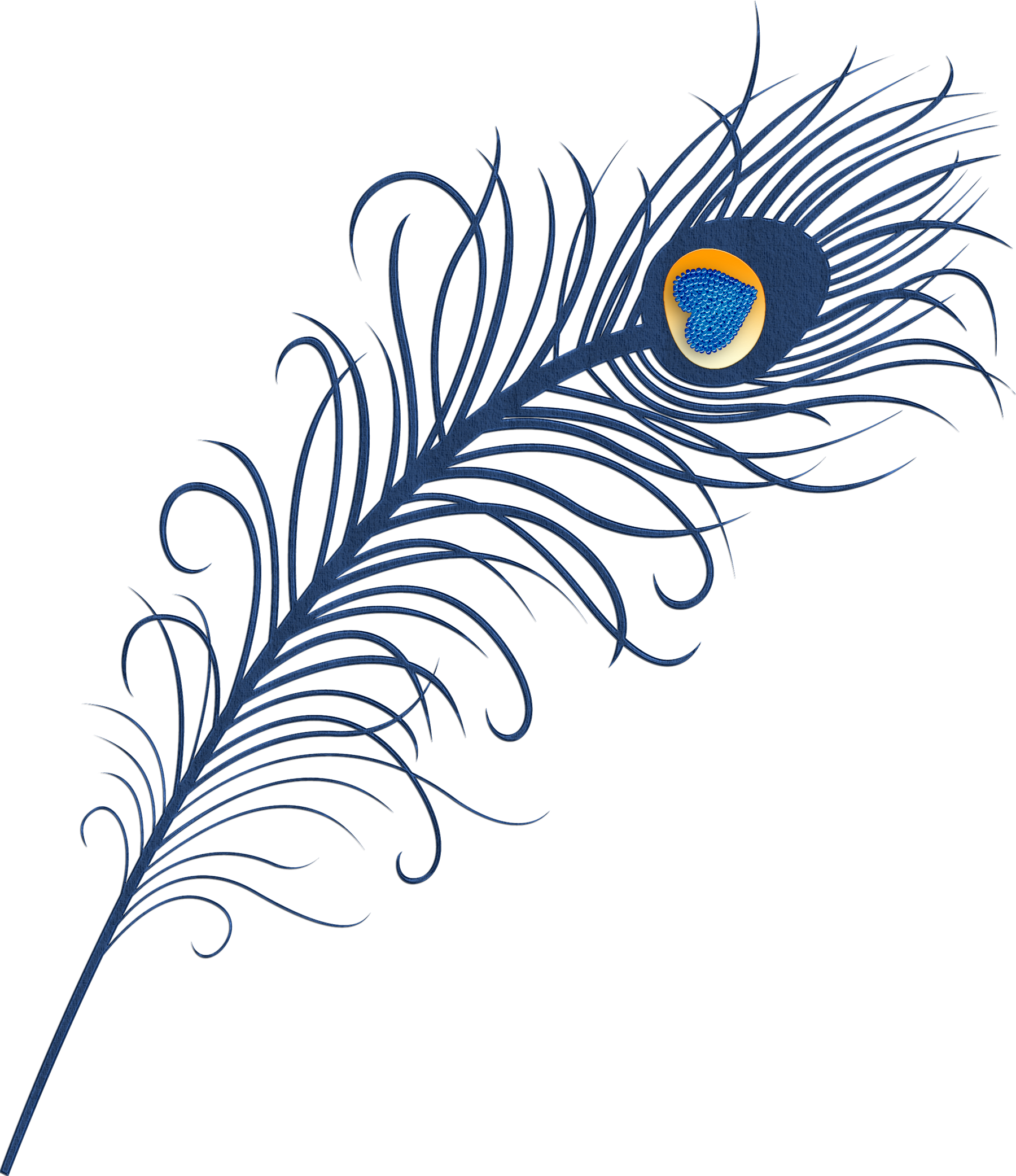 Peacock at getdrawings com. Feather clipart animal