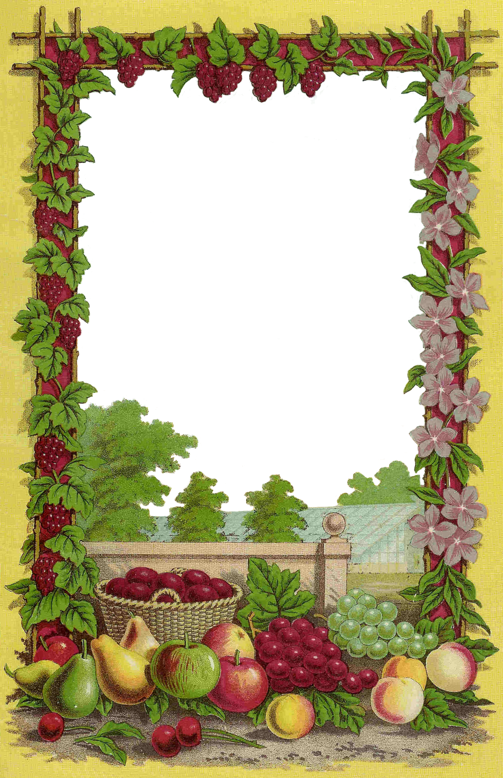 Strawberries clipart frame. Fruit picture frames seed