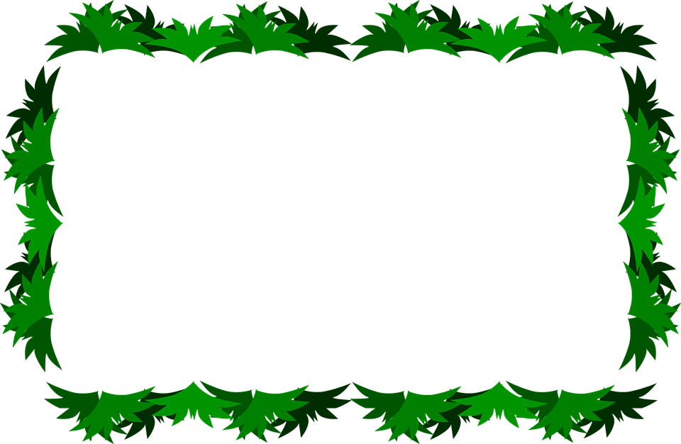 Collection of jungle cliparts. Frames clipart pizza