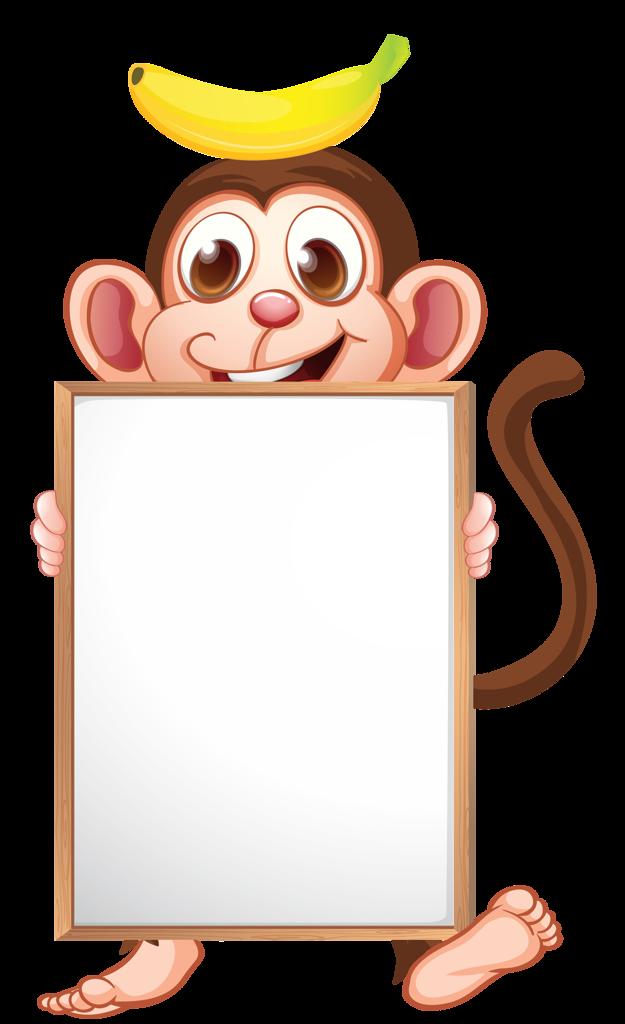 Frames clipart monkey.  png pinterest clip