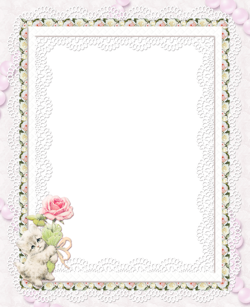With rose transparent frame. Clipart roses kitty