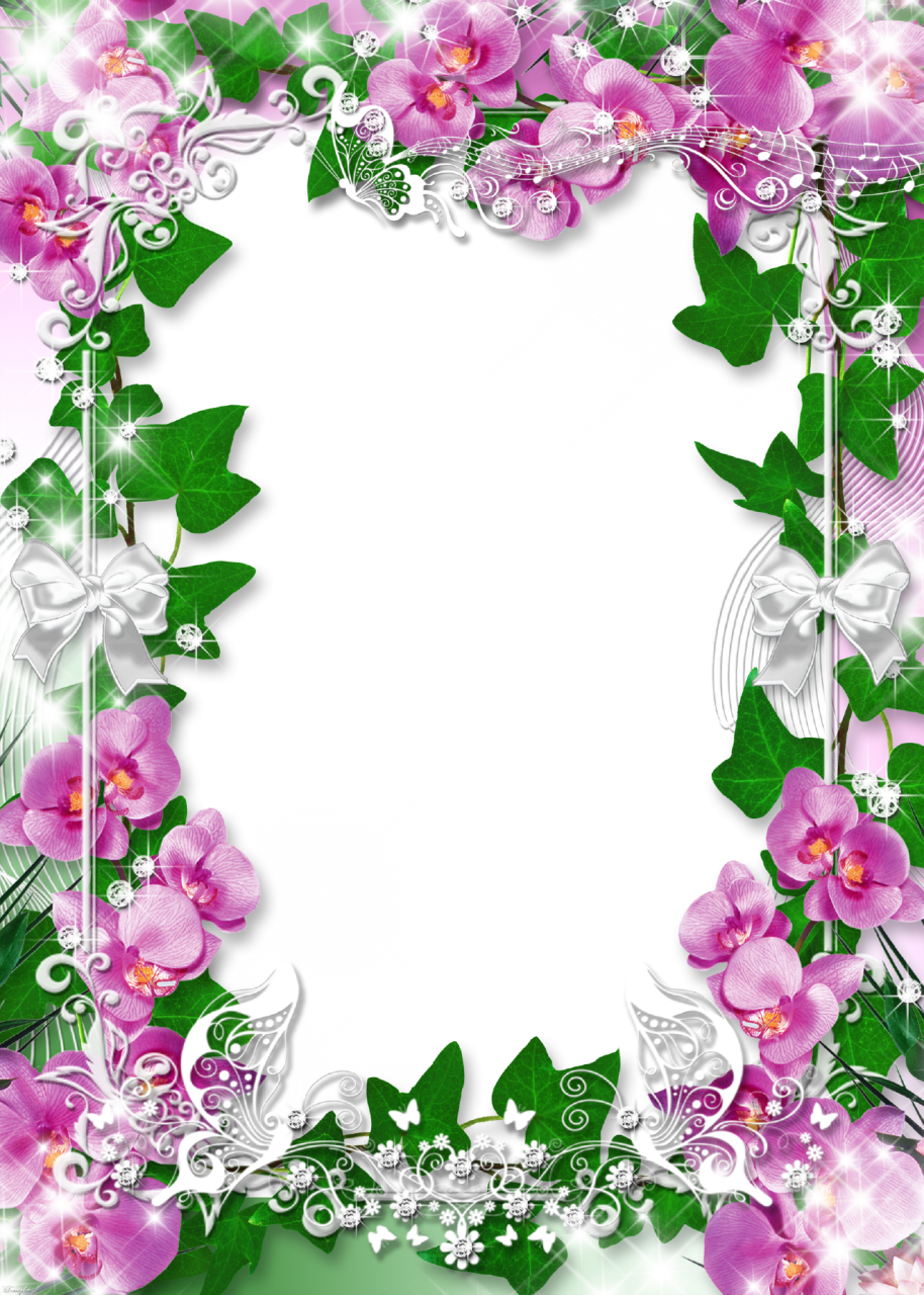 Orchid clipart frame. Photo with flowers favorite