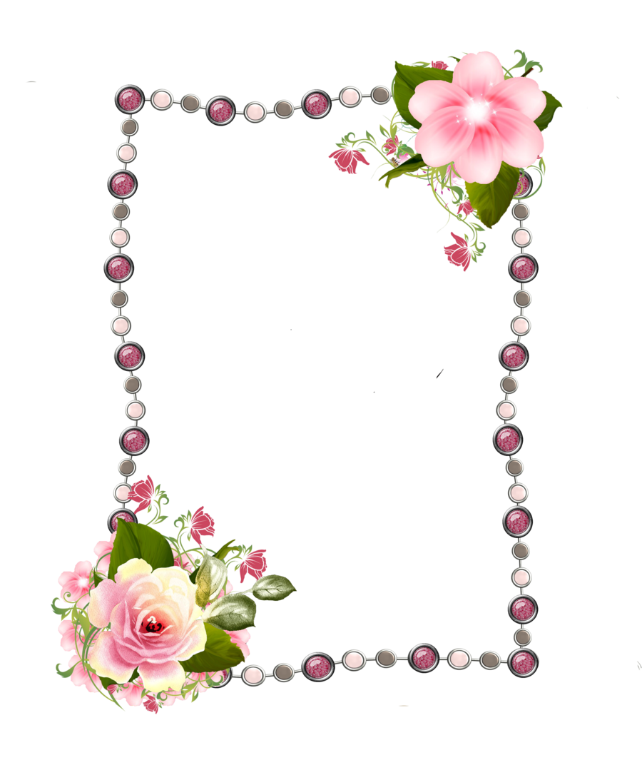 Clipart frames pink rose. Picture photography clip art