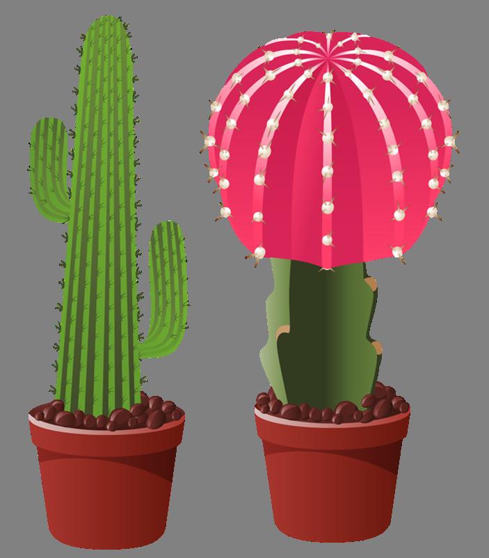 floral clipart cactus
