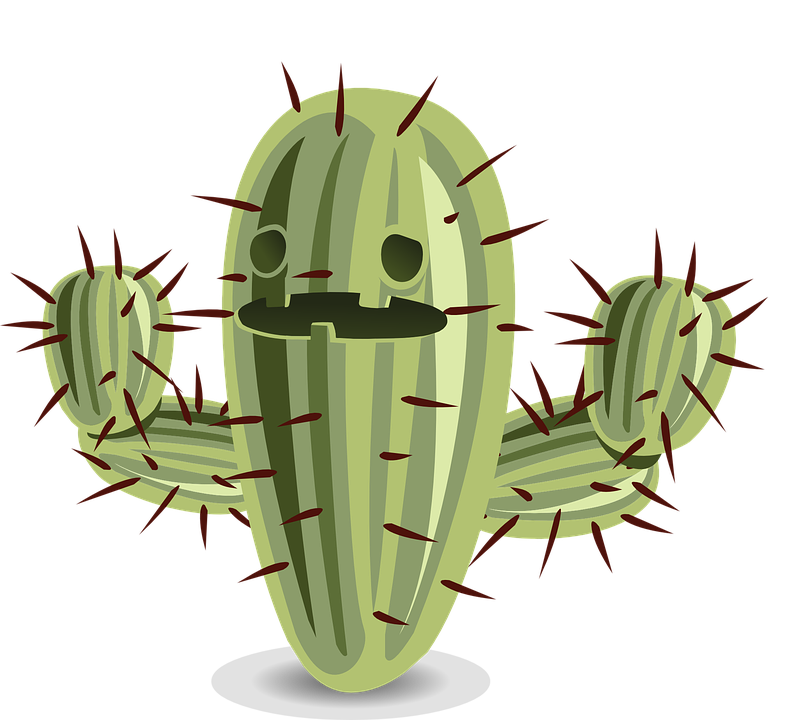 Png free icons and. Clipart tree cactus
