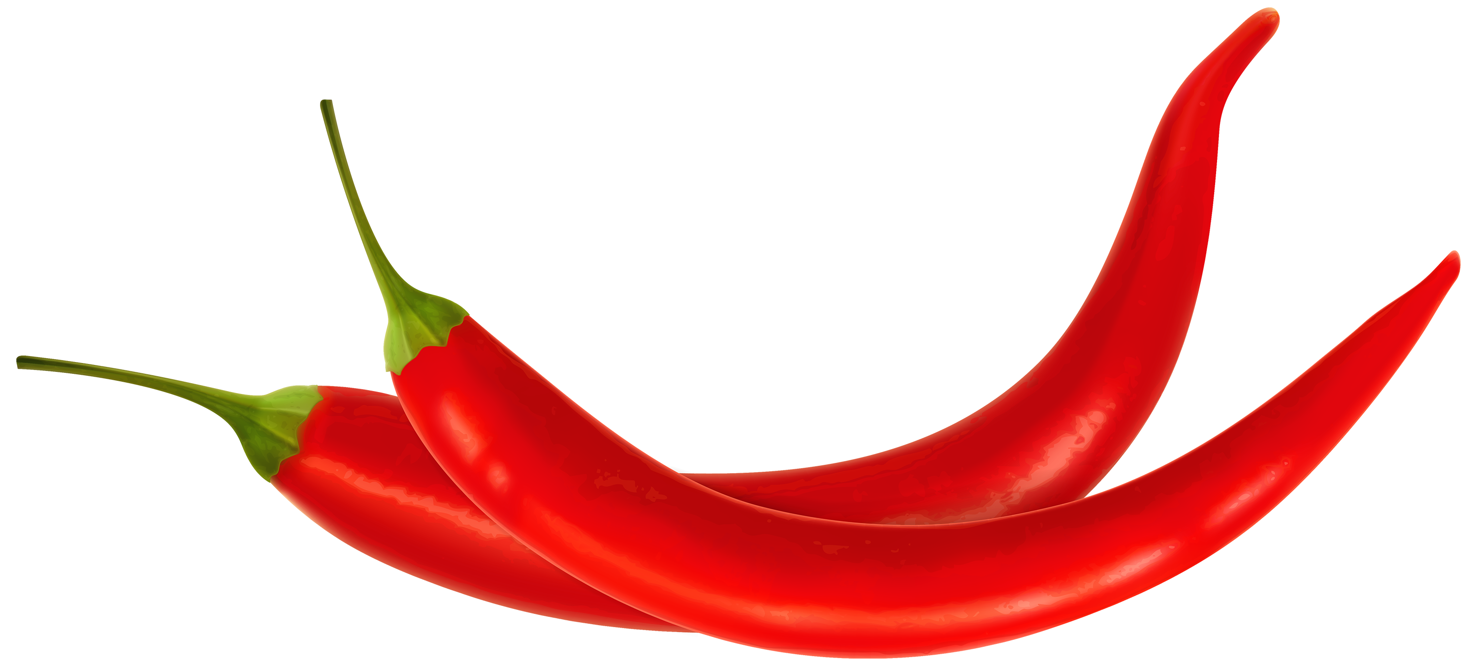 Peppers clipart habanero. Red chili web image