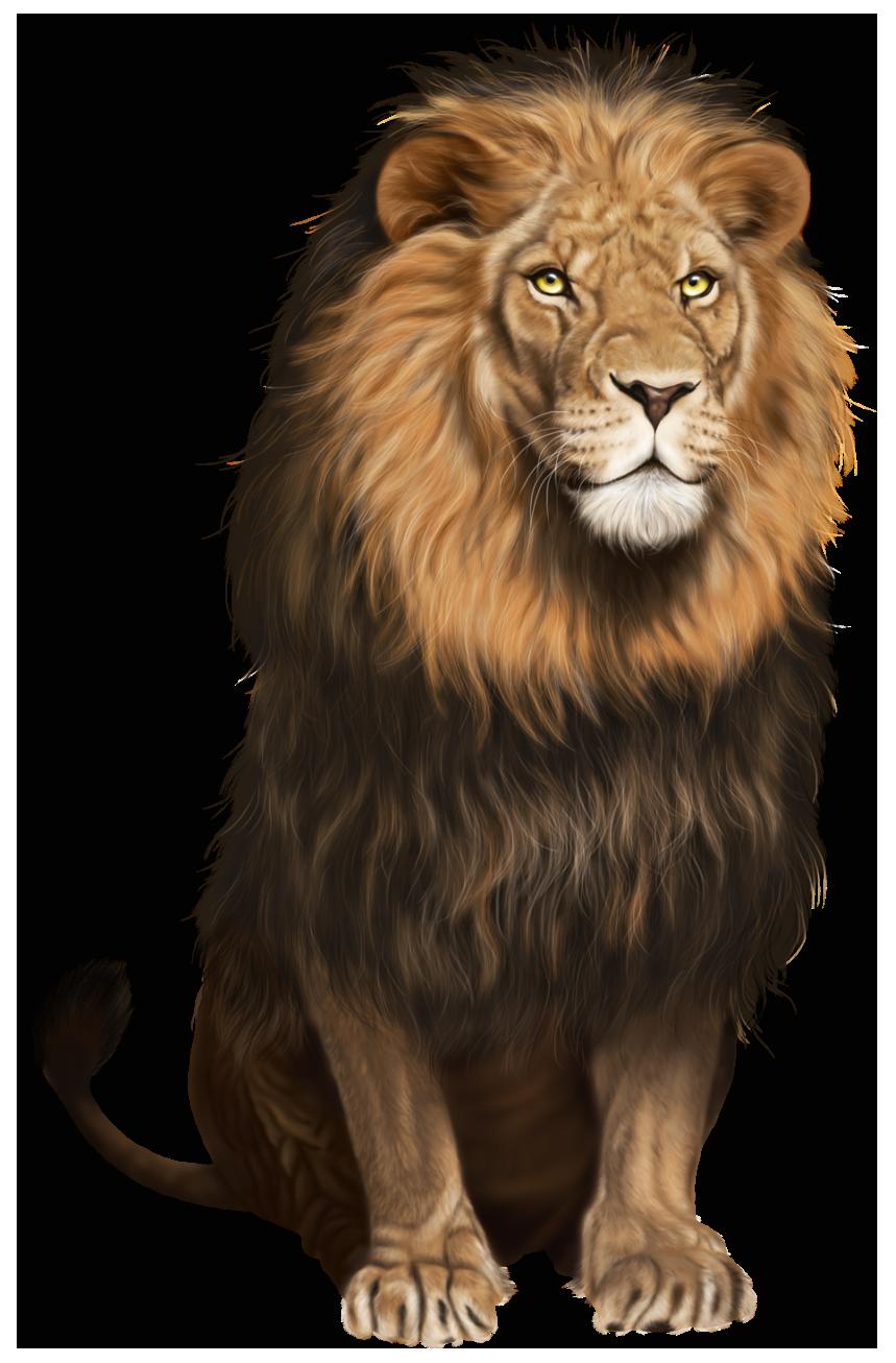 Transparent clip art image. Clipart png lion