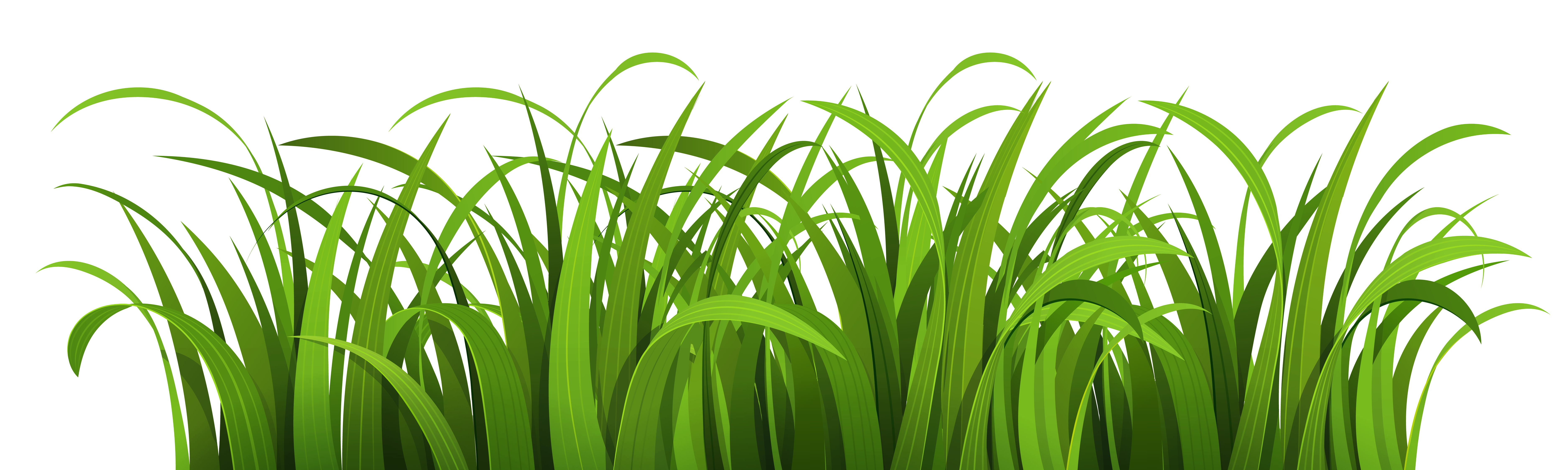 Png image purepng free. Nature clipart flower