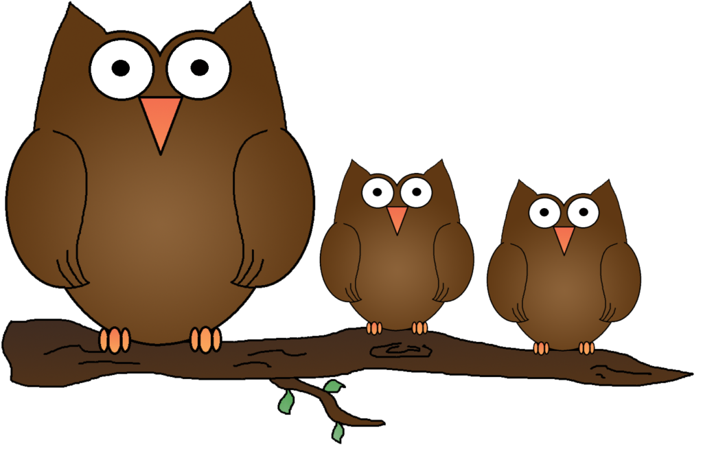 wise bird images. Clipart free owl
