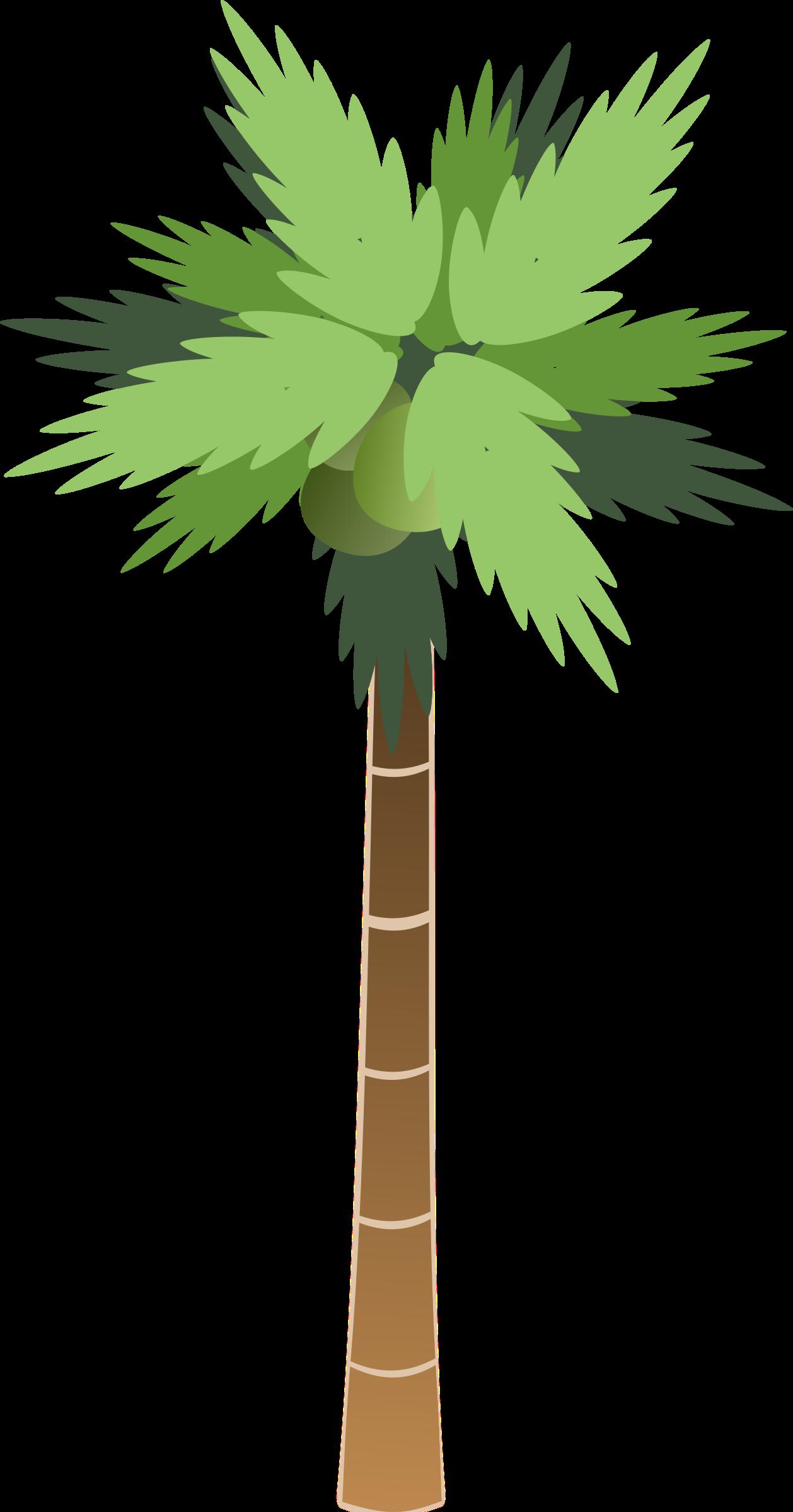 . Desert clipart palm tree desert