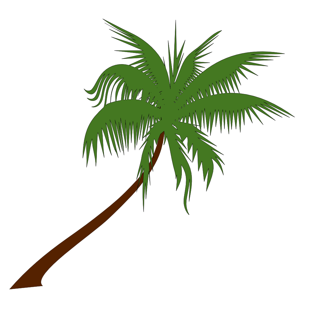 Website clipart kid. Palm tree free