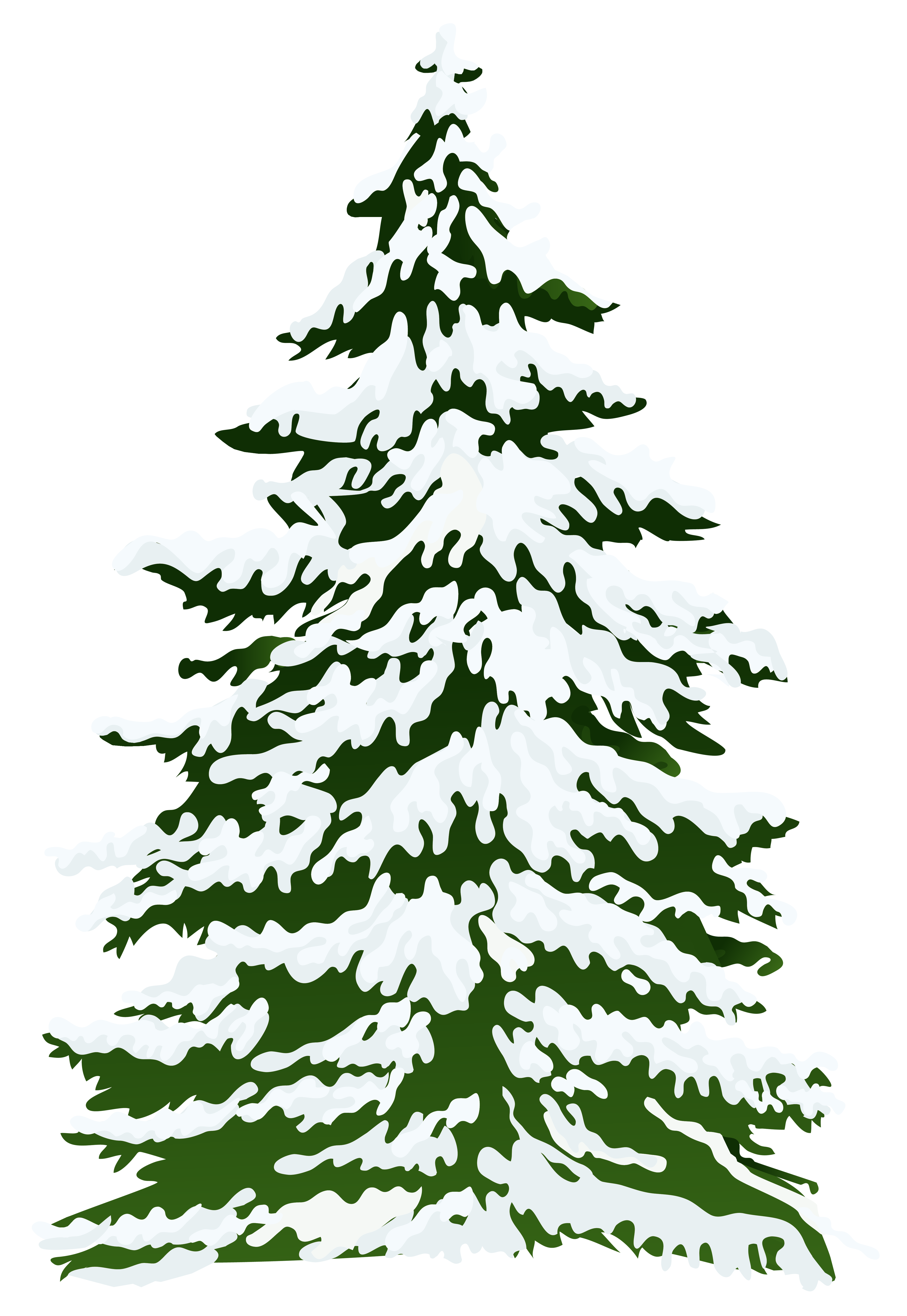 Clipart trees winter. Snowy pine tree png