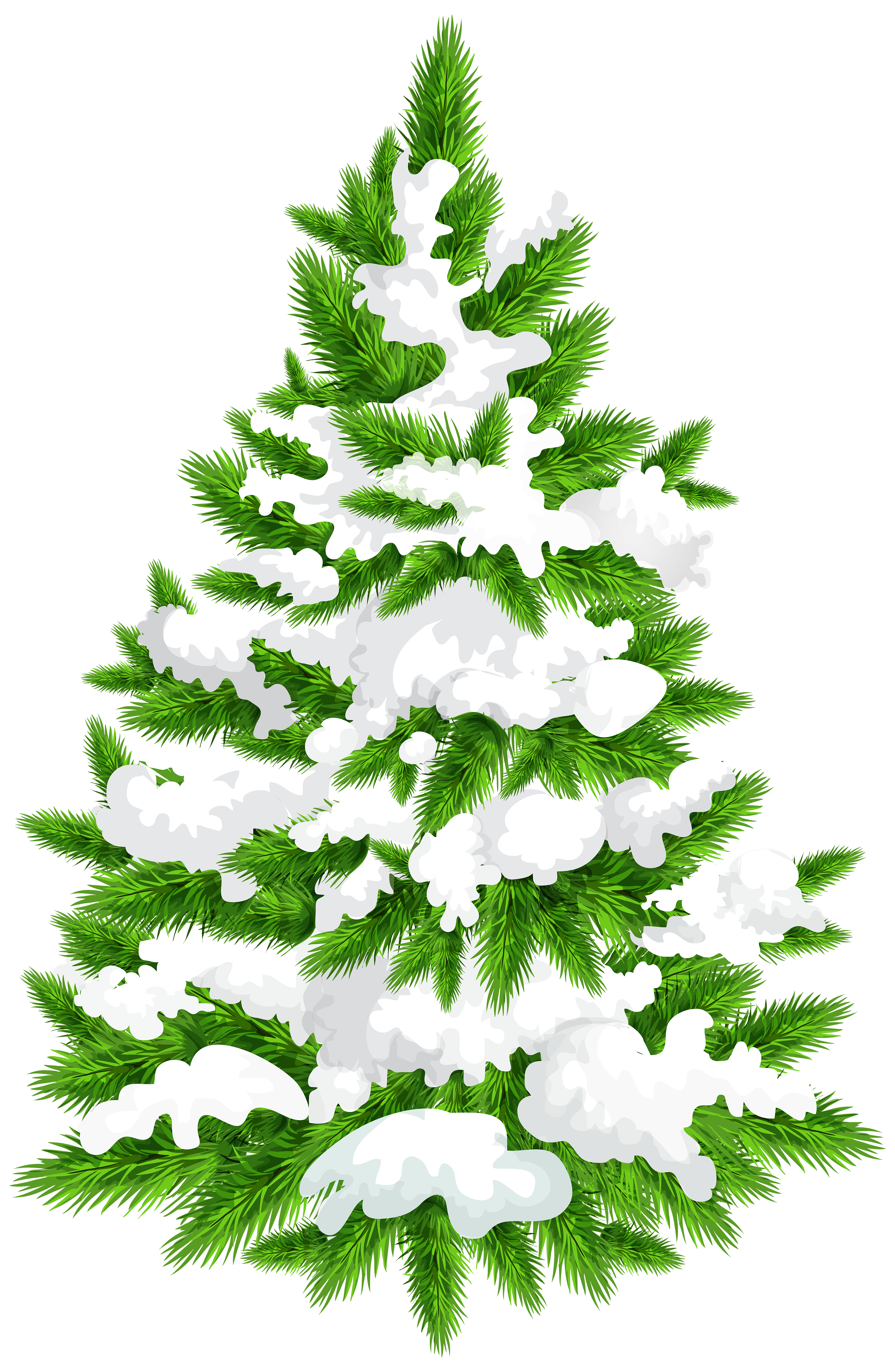 Snowy pine png clip. Tree clipart snow