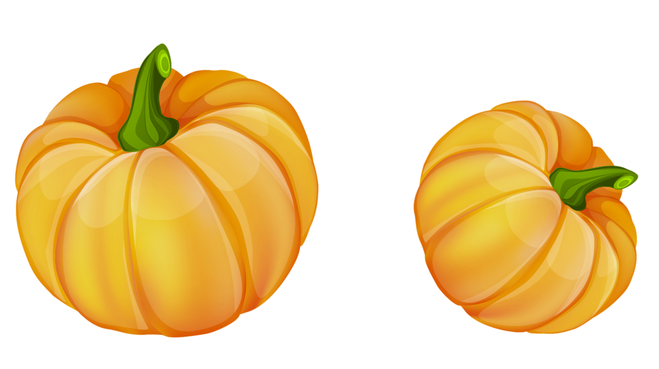 Pumpkin clipart donut.  collection of transparent