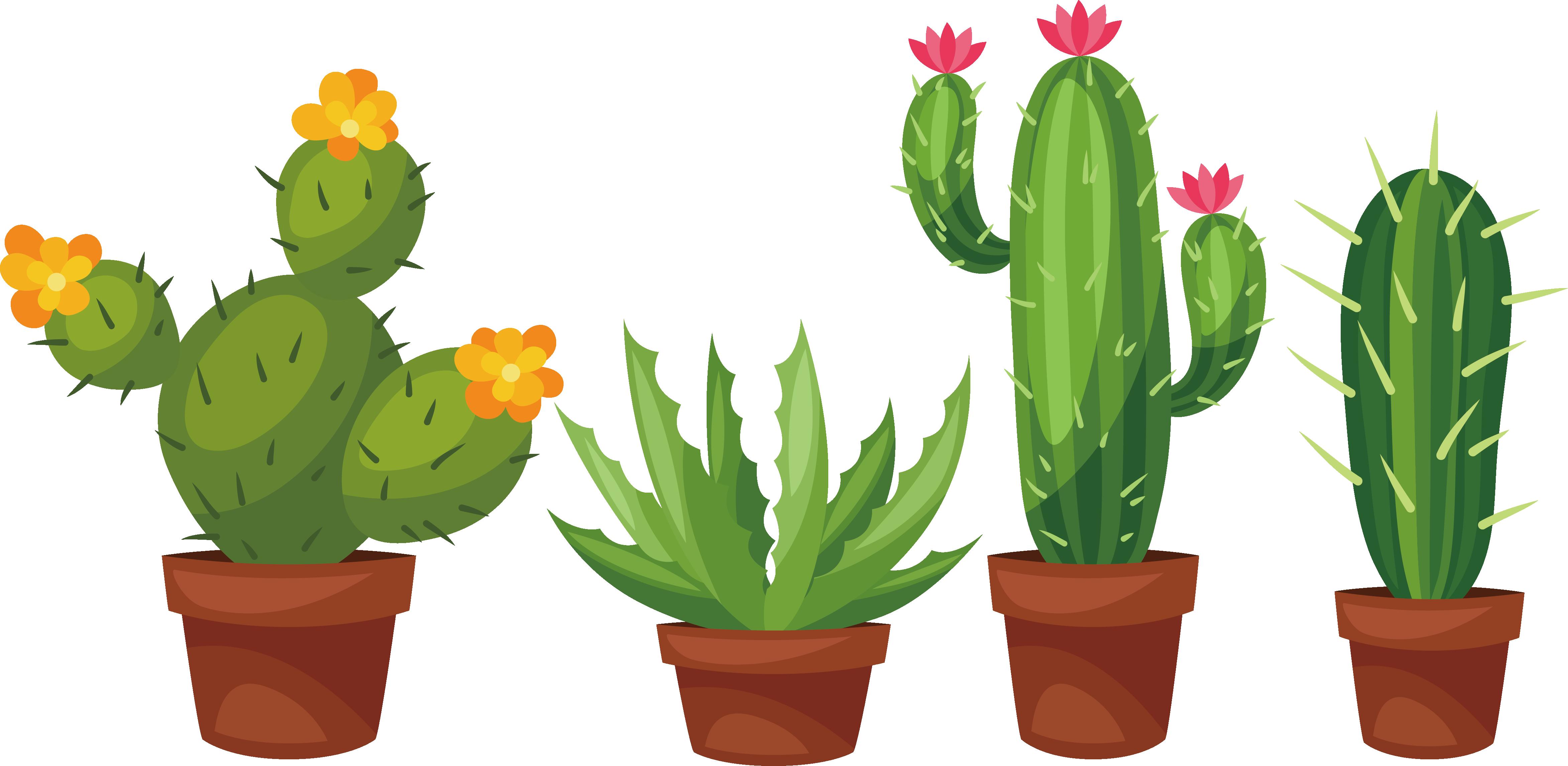 Succulent plant cactaceae prickly. Clipart tree cactus