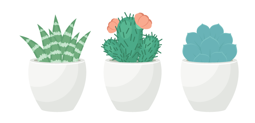 collection of drawing. Clipart free succulent