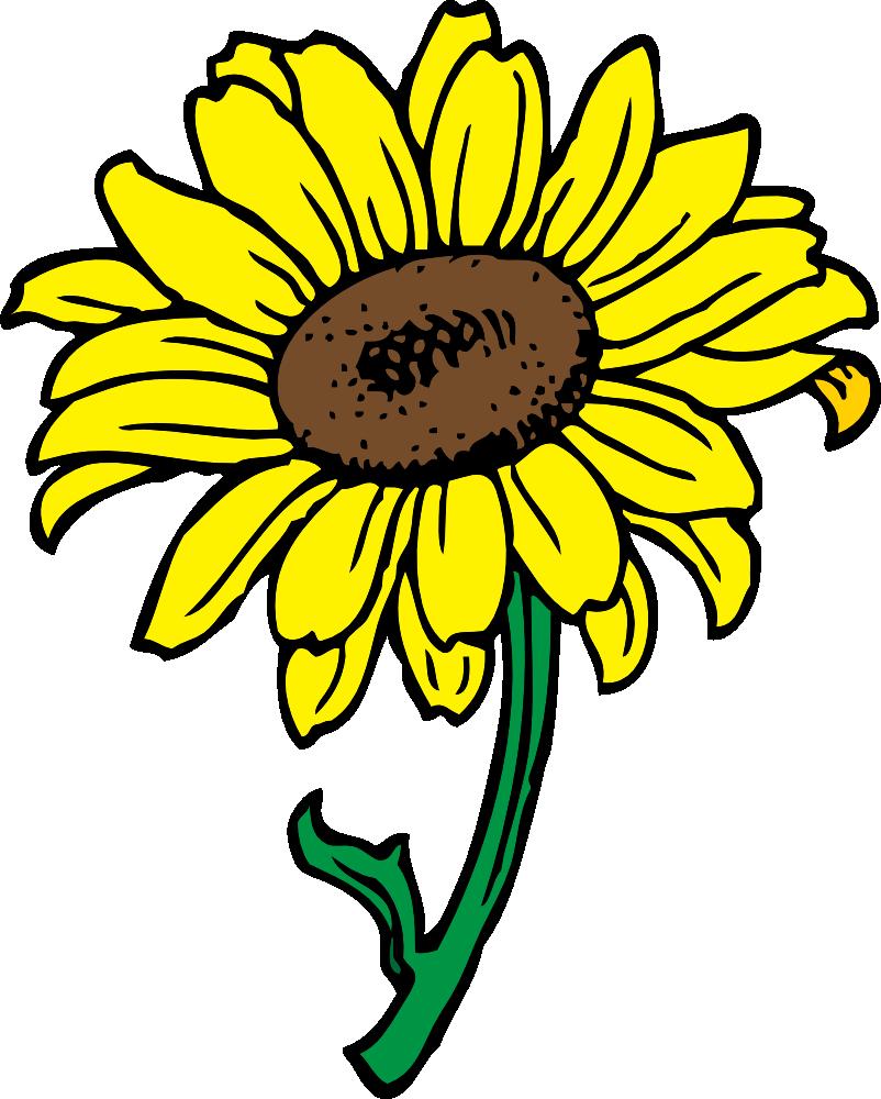 Tree clipart sunflower. Clip art free printable
