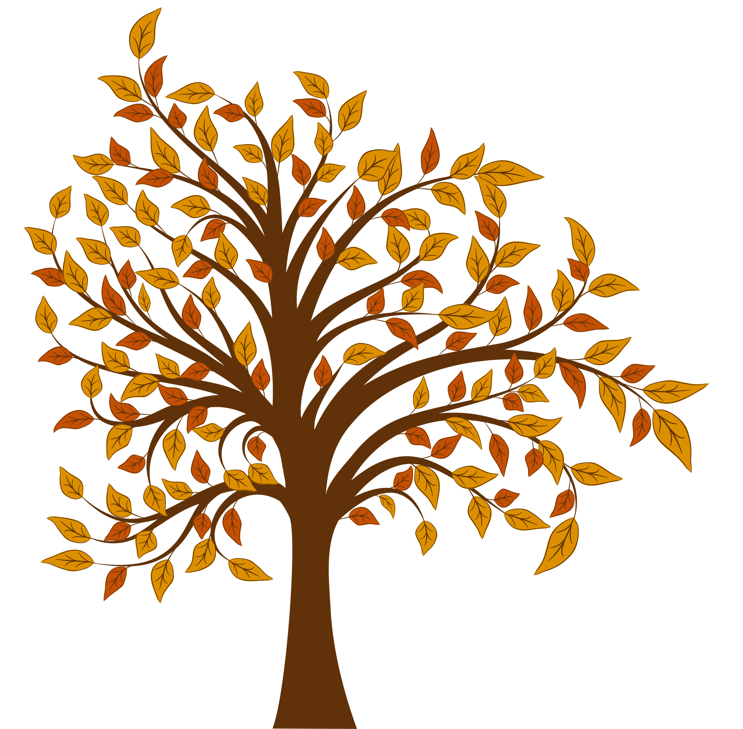 collection of free. Clipart tree season