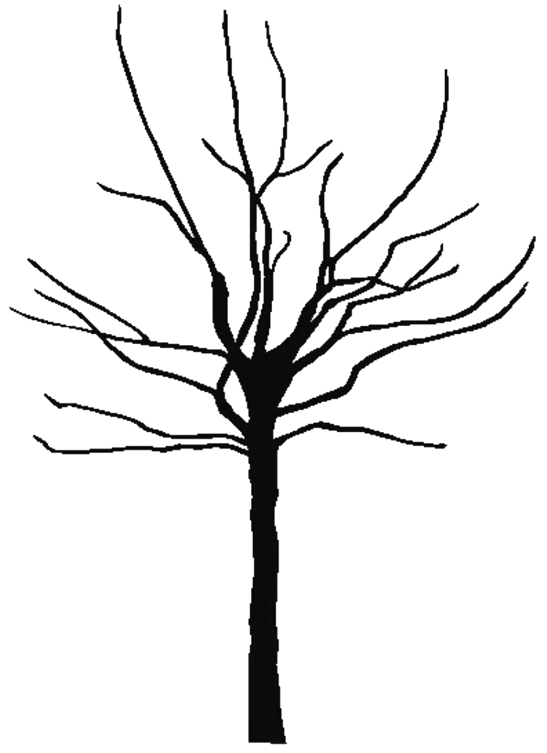 Best Bare Tree Clip Art #5152 - Clipartion.com