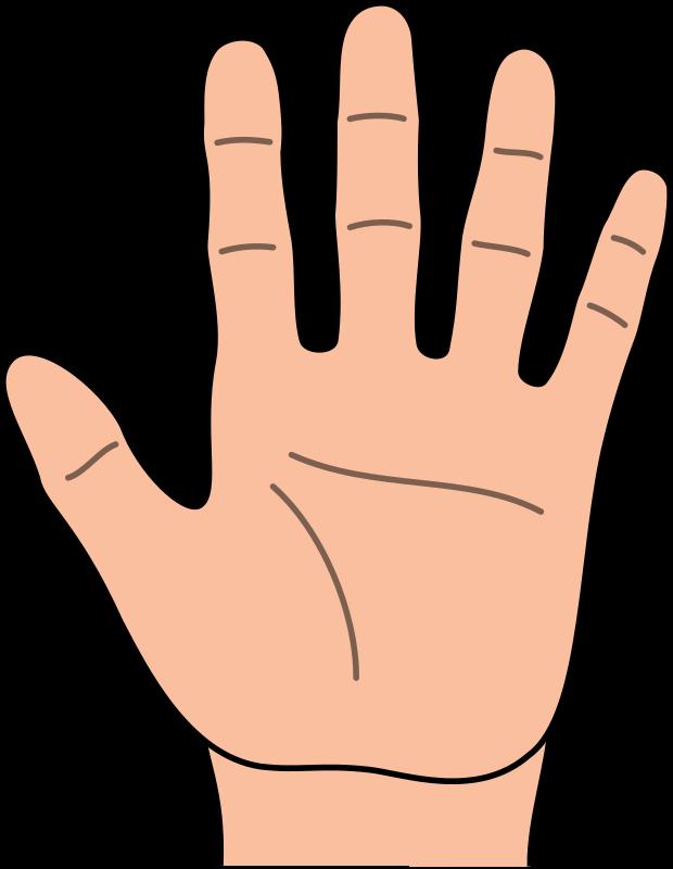 Pinterest. Handprint clipart hand outline