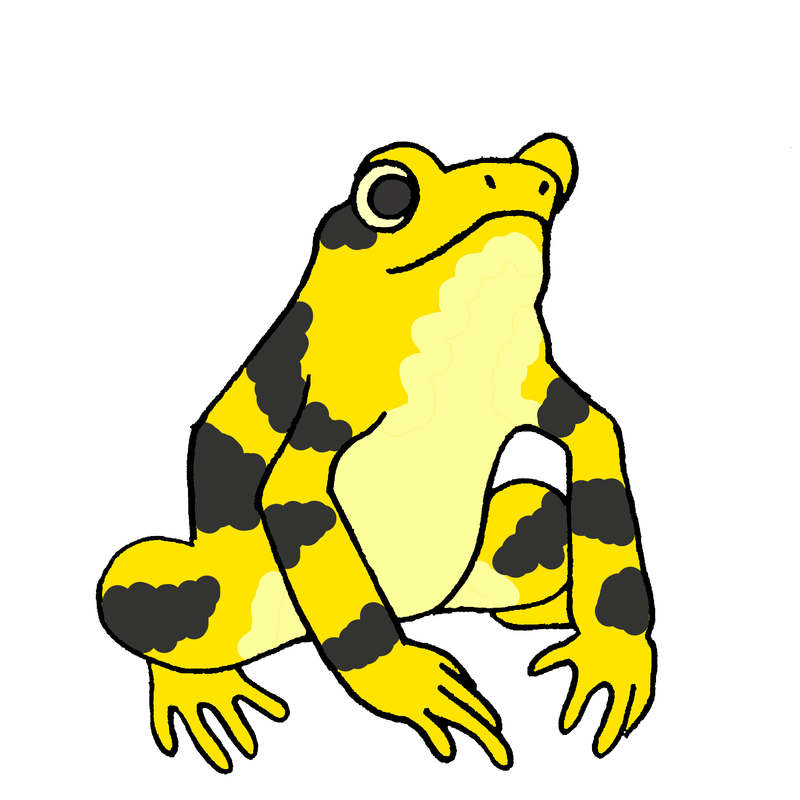 Panamanian golden frogs unless. Clipart frog animal