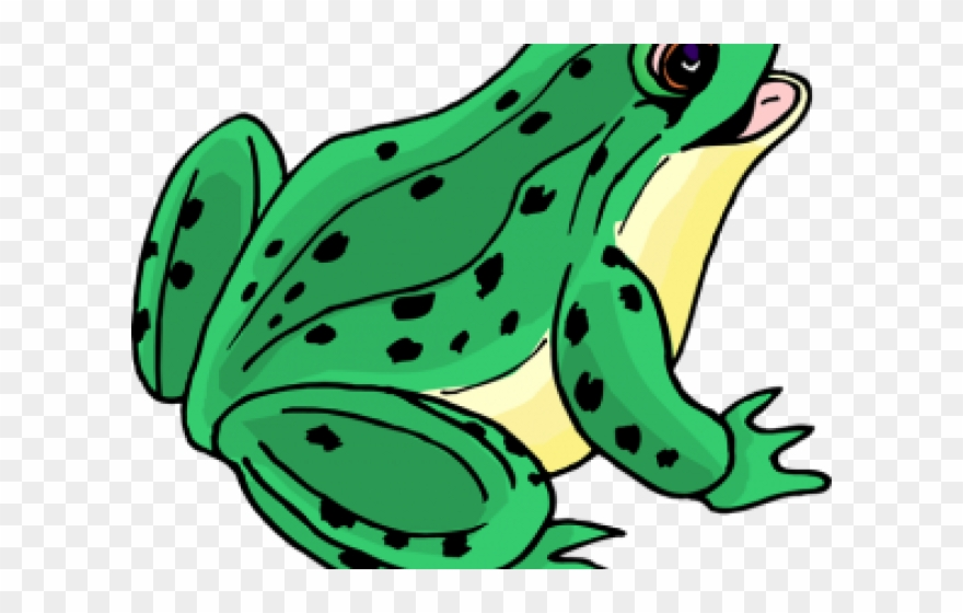 Tongue picture of png. Frog clipart bullfrog