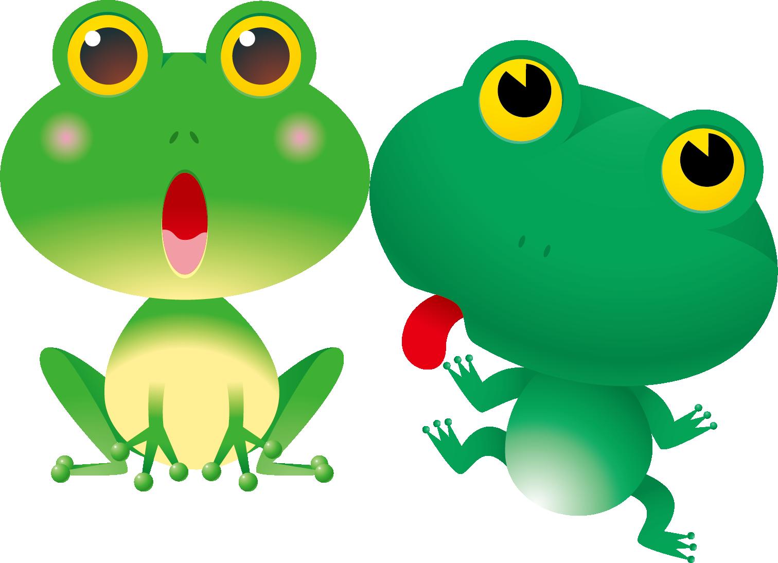 Cartoon lithobates clamitans clip. Clipart frog bullfrog