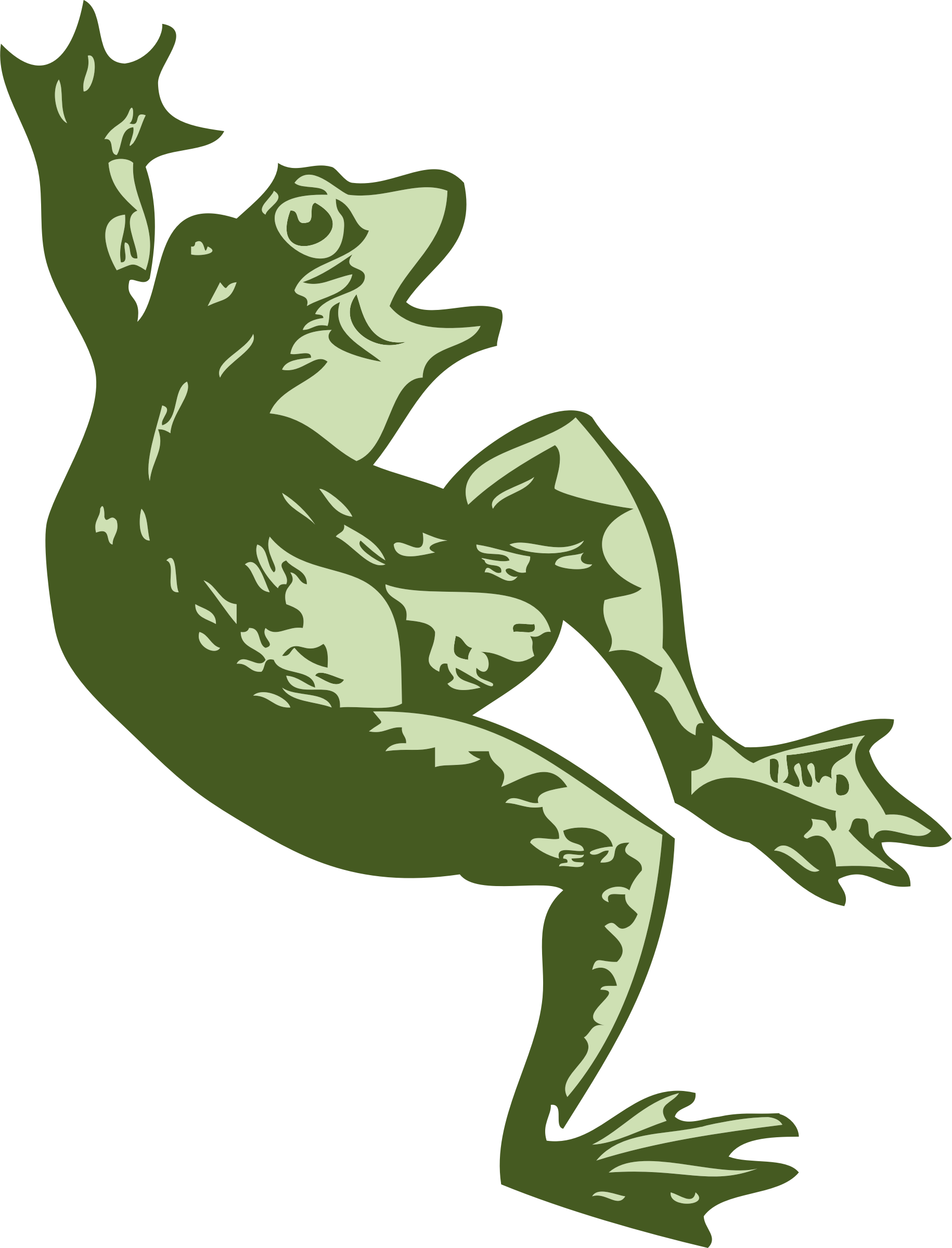 Toad clipart small frog. Dancing big image png